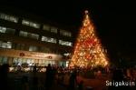 【さいたま上尾点火祭】美しいクリスマスライトアップ