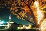【聖学院大学】キャンパスライトアップ