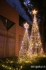 【女子聖学院中高】華やかな2本のツリー
