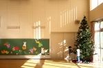 【聖学院幼稚園】園児たちによる飾りつけ。可愛らしいツリーができました