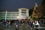 07.【駒込ツリー点火祭】小学校イルミネーション